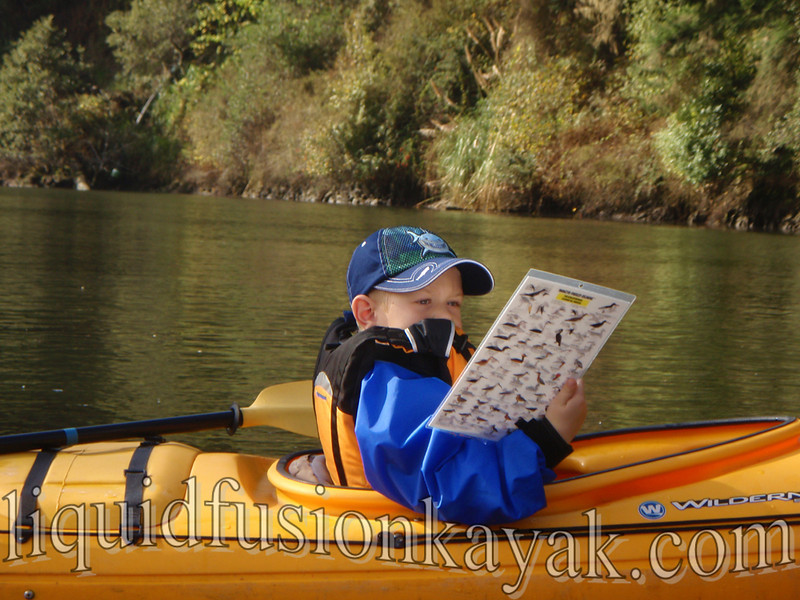 family, kids, fort bragg, mendocino, kayak, tour,