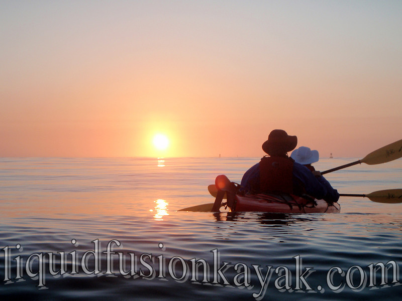 kayak, tour, sunset, mendocino, fort bragg, wildlife,