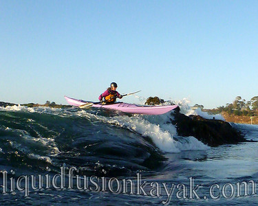 Mendocino sea kayaking and rock gardening